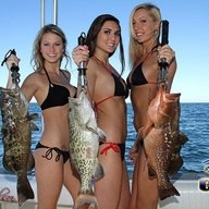 Fish Dating Website The